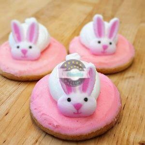 Beau Bunny, Easter Cookie, Cinotti's Bakery, Jacksonville Beach