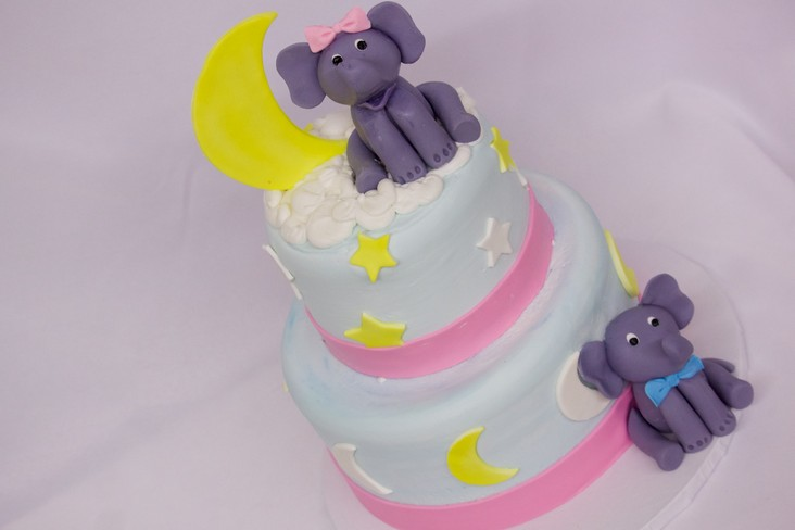 Elephants in the sky, Cinottis Bakery, Fondant Elephant stars, Moon, Fondant