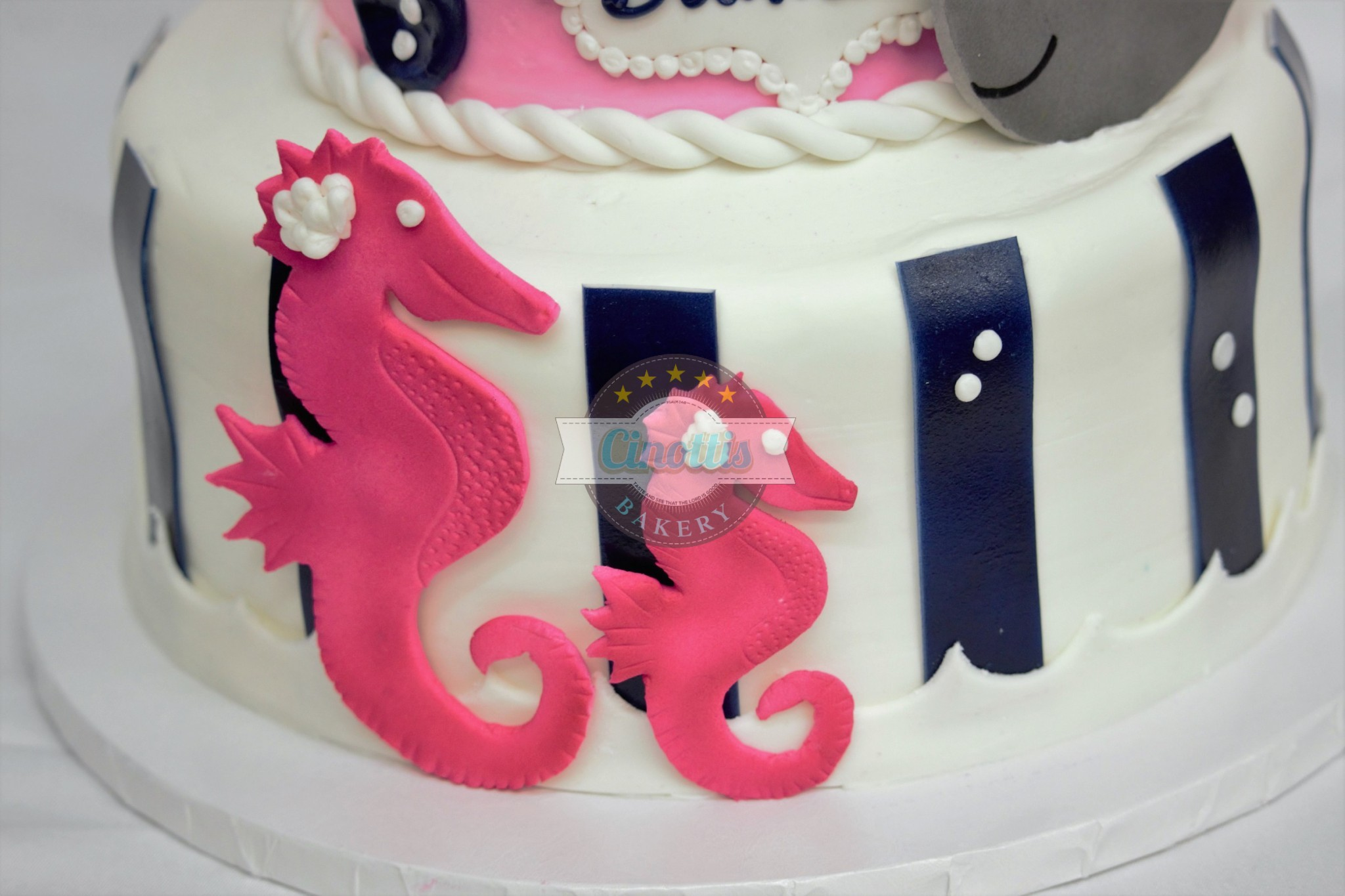 Anchor Your Love In A Pink Baby Whale Cinottis Bakery