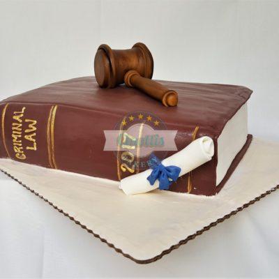 Graduation Books, Law, School, Books, Cake, Diploma, College, Gavel, Judge, Grooms, Shower, Party, Jacksonville, Beach, Cinotti