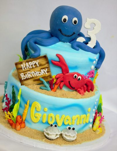 Octopus Sea Life