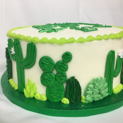 Cactus Cutie, Cake, Western, Desert, Mexican, Succulents, Cowboy, Birthday, Grooms, Cake, Jacksonville