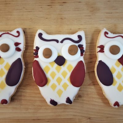 owls, halloween, cookies, jacksonville, beach, bakery, harry, potter, birthday, party, favor