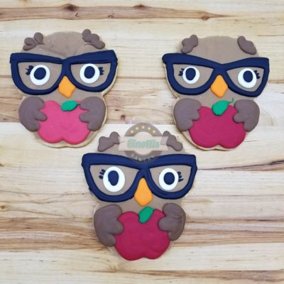 Nerdy Owl Iced Cutout, Cookies, Cinottis Bakery, Nerdy, Owl