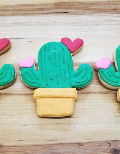 Cactus Cookies, Cinottis Bakery, Valentines Day, C