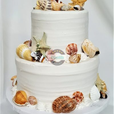 Shells, Wedding, Cake, Shells, Beachy, Sand, Shore, Destination, Buttercream, Rustic, Simple, Birthday, Adult, Bridal, Jacksonville, Shower, Party